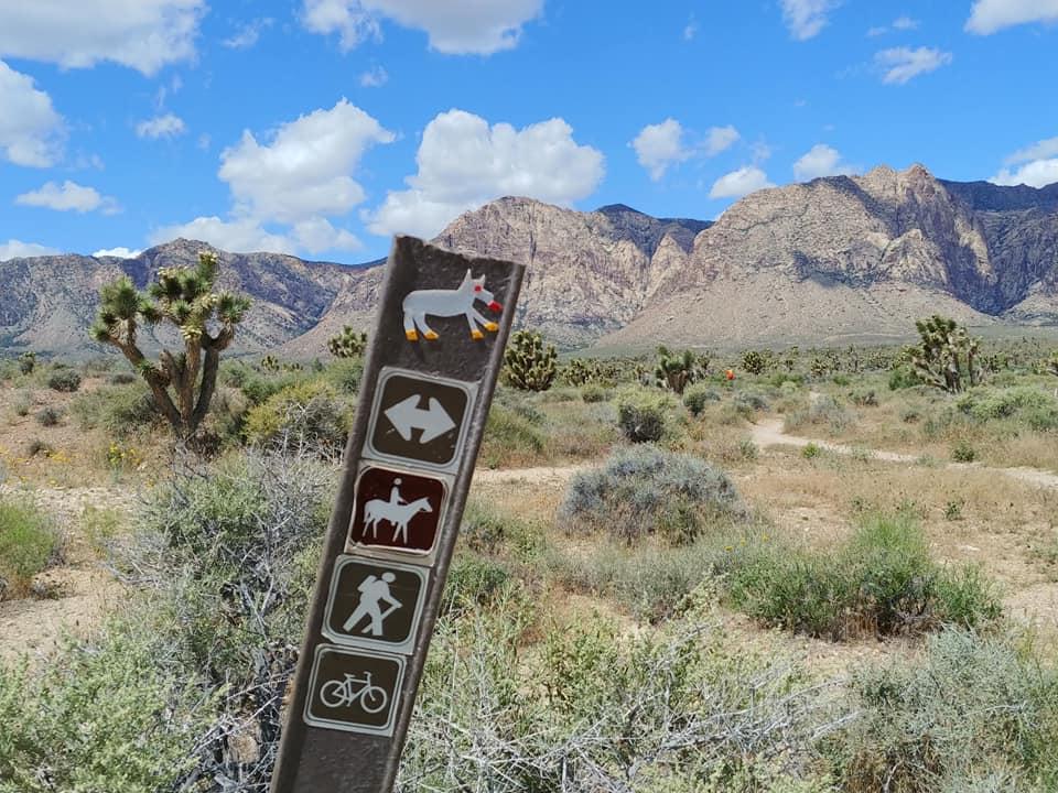 Outdoor Activities 2 - LasVegasRealEstate.com